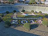 岡崎公園、花時計