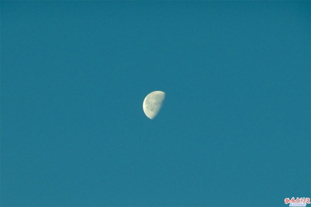 お正月の月