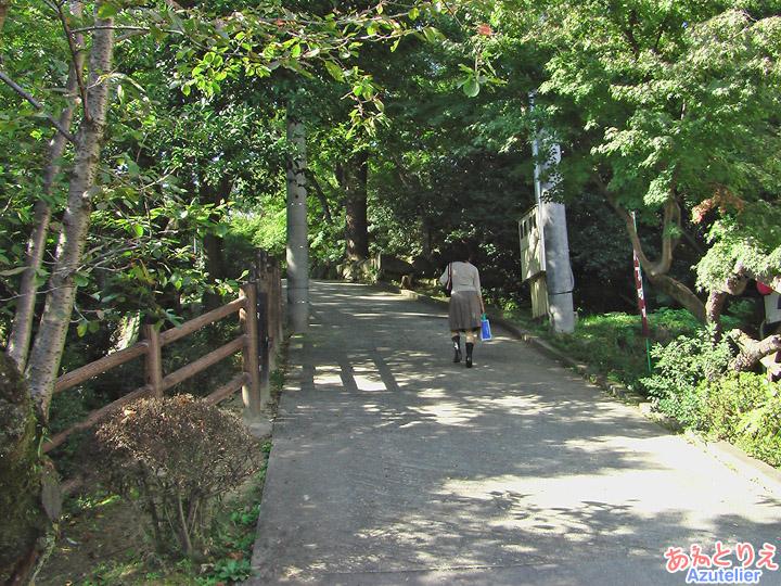 城南亭そば~岡崎公園内~竹千代橋
