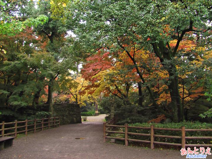 秋の岡崎公園