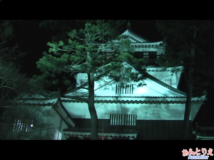 光ビスタライン、岡崎城側