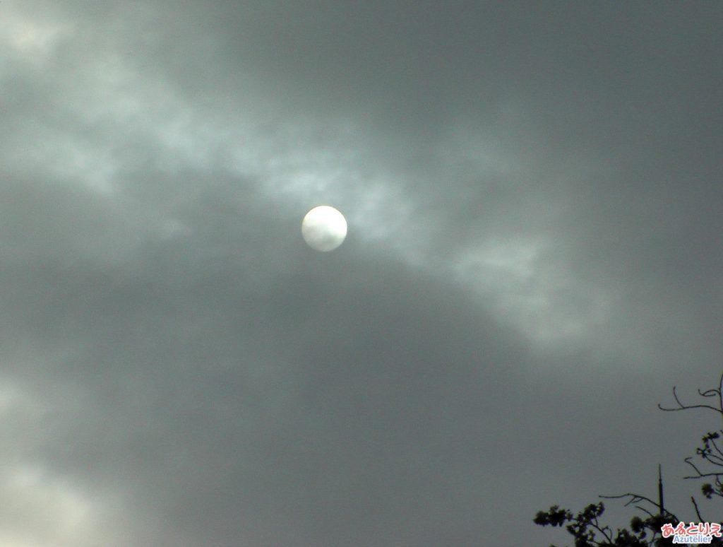 曇ってきました