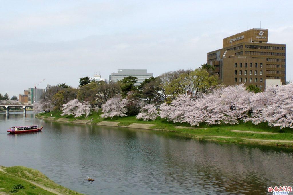 両岸に桜が咲き、素敵。