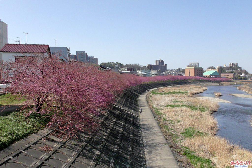 竹橋から望む