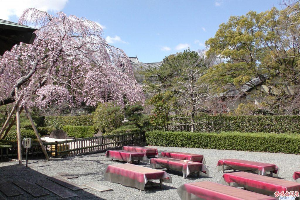 城南亭の庭席