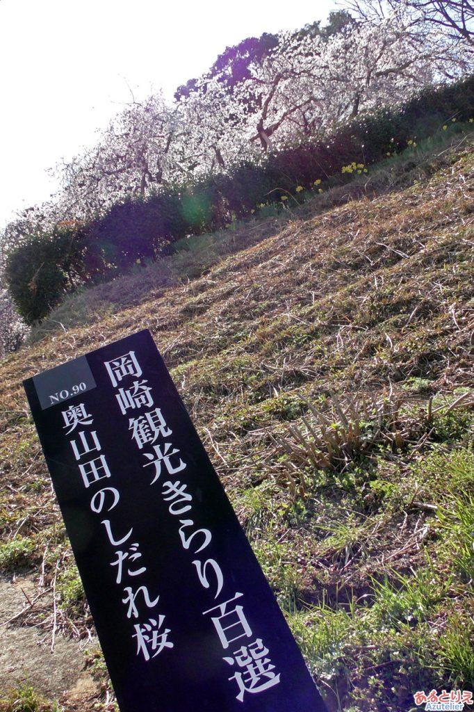 岡崎観光きらり百選に選ばれています