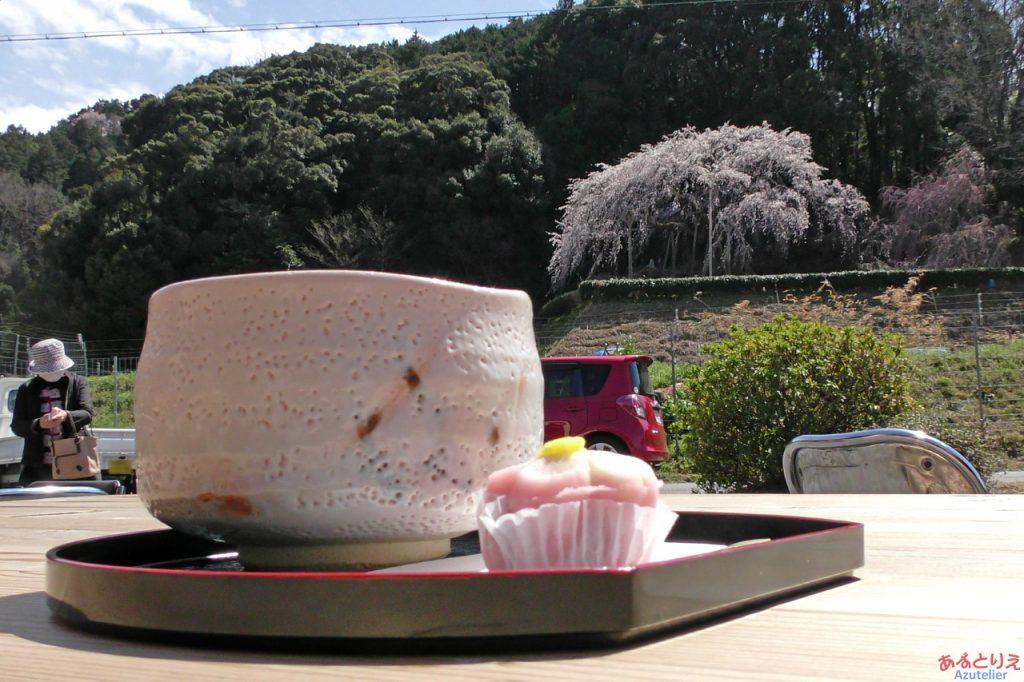 しだれ桜と持統天皇に乾杯!!