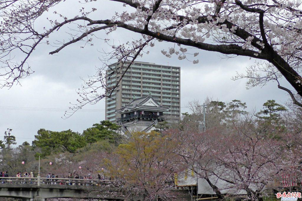 伊賀川沿いから岡崎城を望む