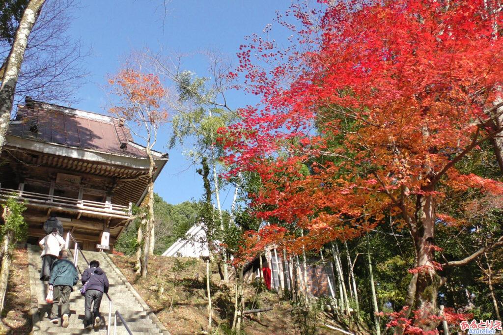 階段右側の紅葉が真っ赤で綺麗です。