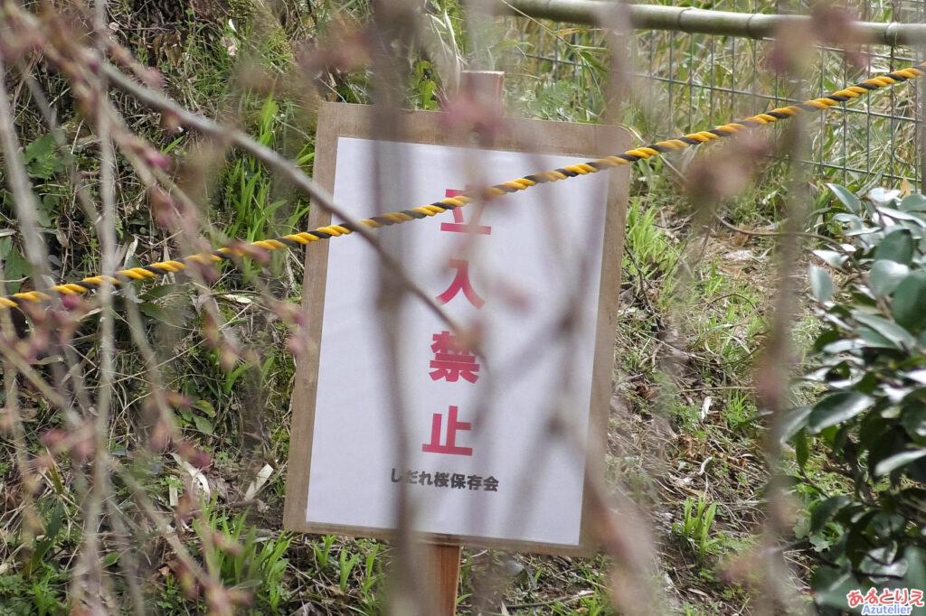 裏山へは立ち入り禁止です
