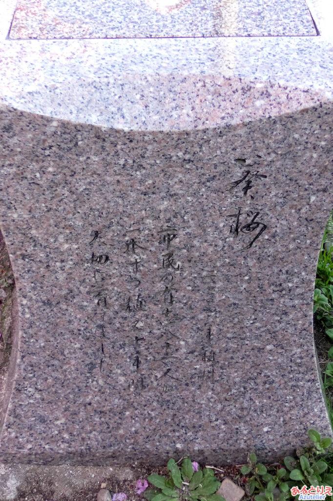 「葵桜」ベンチ